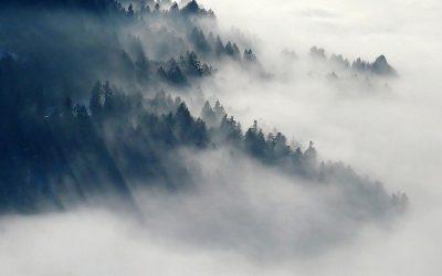 November-Nebeltage für uns selber nutzen